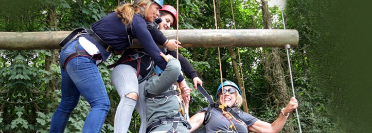 Corporate Activities - Tree Abseil